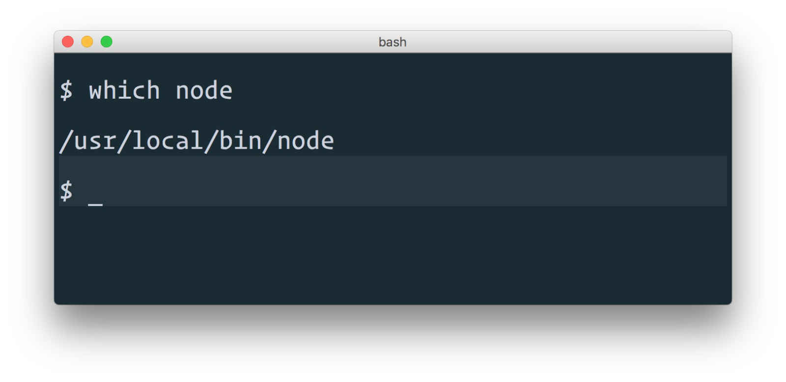 Find path to node executable in Terminal