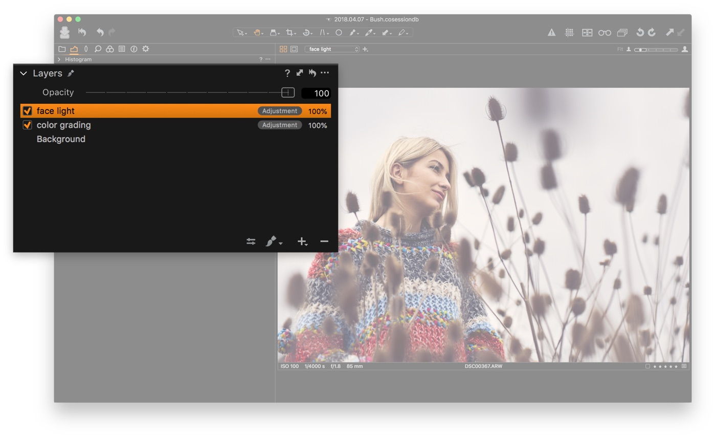 Layers panel in Capture One Pro
